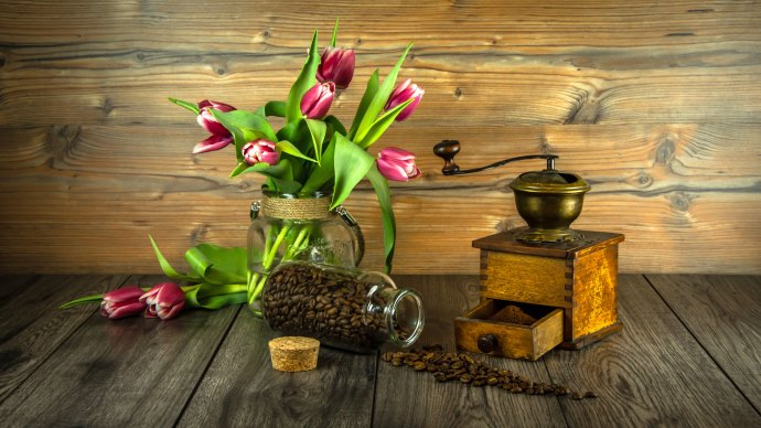 Wallpaper: Grain Coffee and Tulips