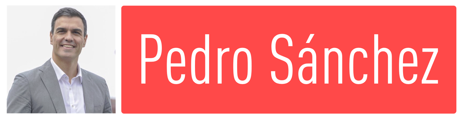 Candidatura: Pedro Sánchez