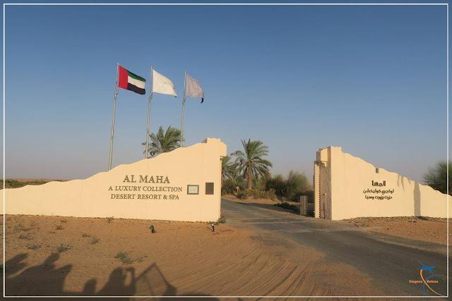 Safári no Deserto de Dubai