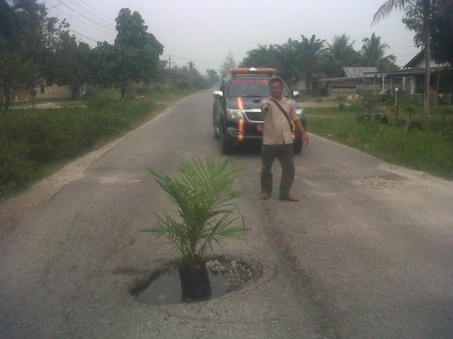 Tak Kunjung Diperbaiki, Aktifis Singkil Tanam Sawit di Badan Jalan