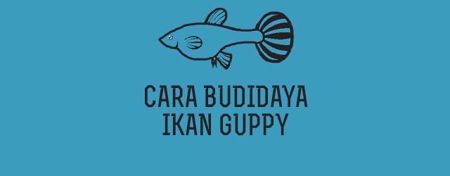 Pdf budidaya download gurame ikan