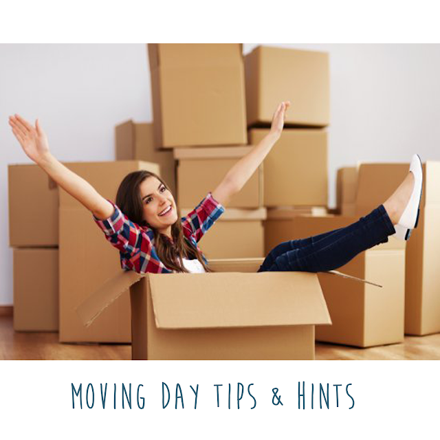 moving day to rented apartment tips and hints