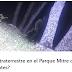 Τα μέσα ενημέρωσης της Αργεντινής δημοσίευσαν οτι η αστυνομία τράβηξε φωτογραφίες σε έναν εξωγήινο