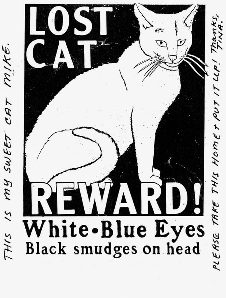 Missing Pet Posters