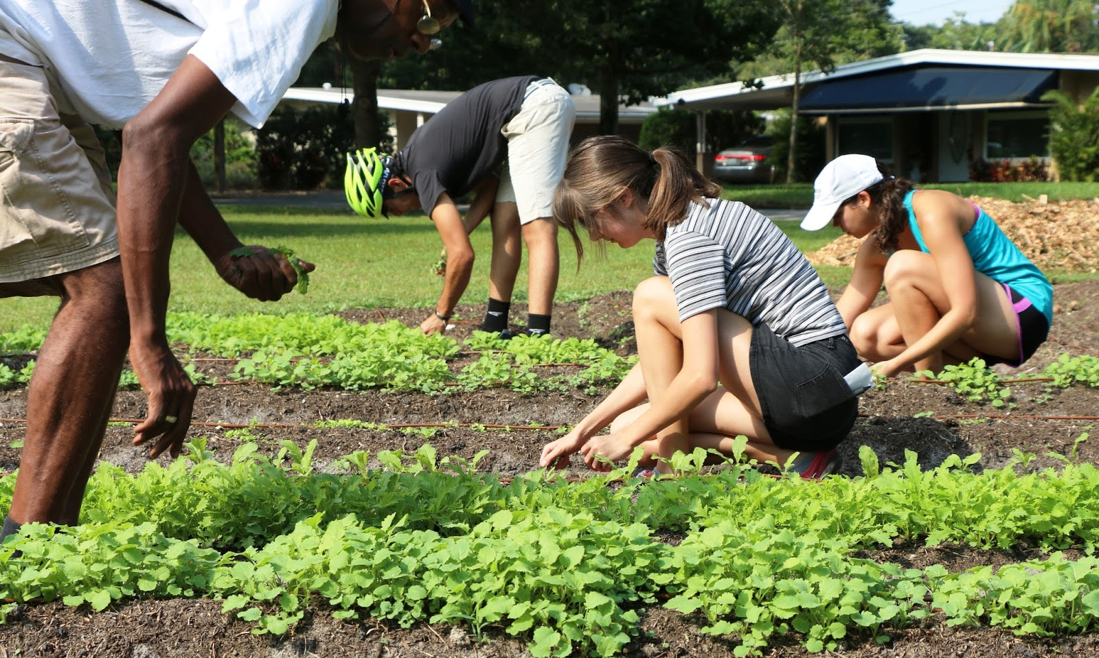 Fleet Farming is a program of IDEAS For Us. IDEAS For Us (IDEAS) is an Orlando-based 501(c)(3) non-profit organization and accredited NGO of the United Nations.