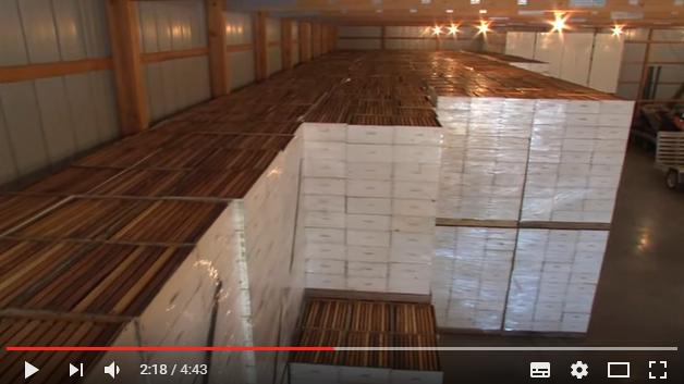 Φανταστικό βίντεο: Τρύγος μελιού στην Αμερική: Δείτε αυτό που δεν θα φτάσουμε ποτέ ευτυχώς ή δυστυχώς...