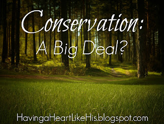 http://havingaheartlikehis.blogspot.com/2016/05/conservation-big-deal.html