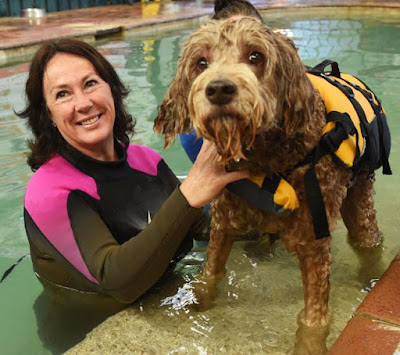 K9 Swim owner Sharon Osmond in a wetsuit hold onto a dog wearing a life jacket by the pool