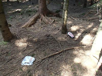 grzyby 2017, grzybiarze niszczący grzyby