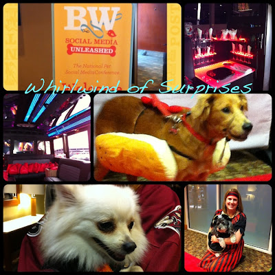 Barkworld pet friendly conference