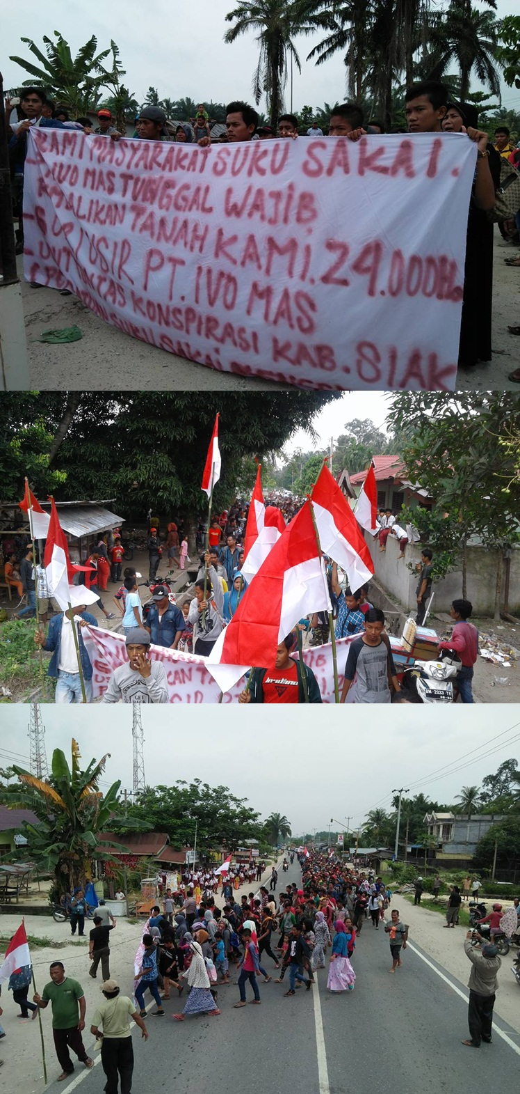 Mereka meminta Gubernur Riau untuk memfasilitasi penyelesaian sengketa tanah ulayat Suku Sakai dengan PT Ivomas Tunggal dan meminta Gubernur Riau untuk memperhatikan nasib anak suku Sakai sebagai suku asli masyarakat Riau