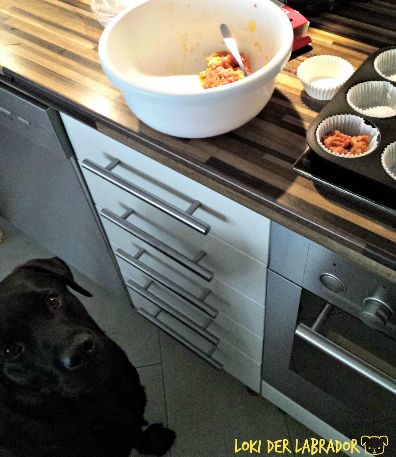 Hackfleisch Muffins für Hunde Labrador