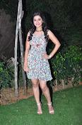 yamini bhaskar new glam pics-thumbnail-6