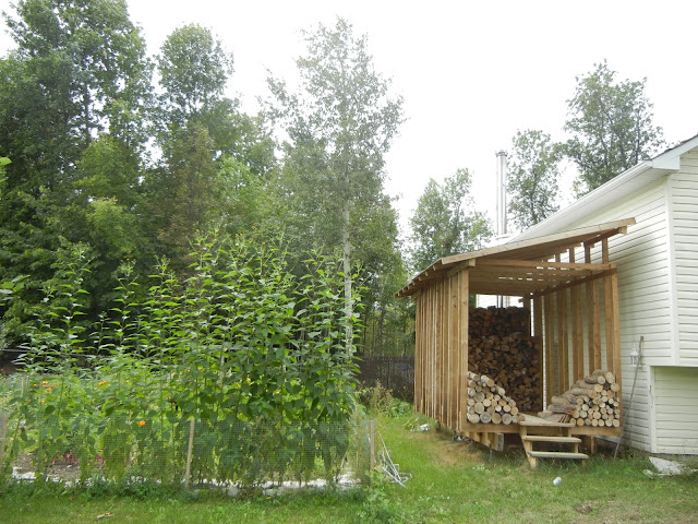 START YOUR OWN HOMESTEAD THIS WEEKEND, BE SELF-SUFFICIENT