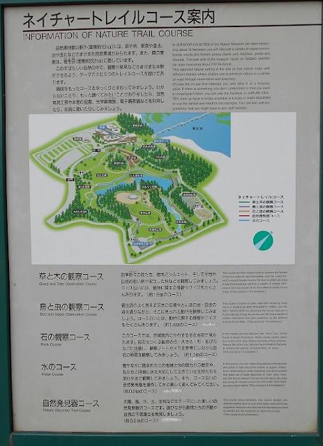 自然博物館敷地の案内図