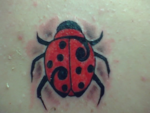 June Bug Tattoo Meaning