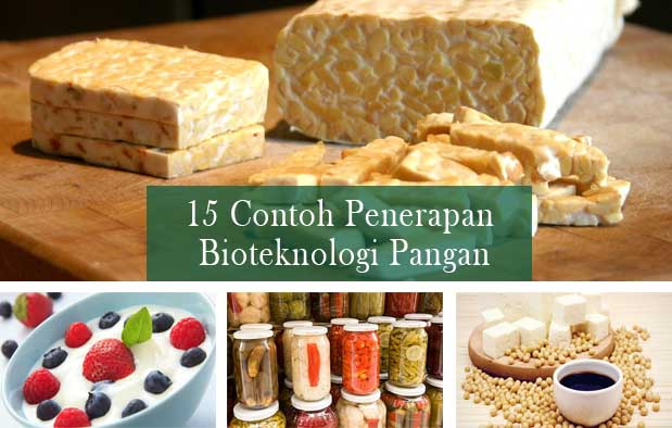 Bioteknologi Pangan 15 Contoh Produk Yang Dihasilkan