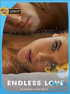 Amor Eterno 2014 HD [1080p] Latino [Mega] dizonHD