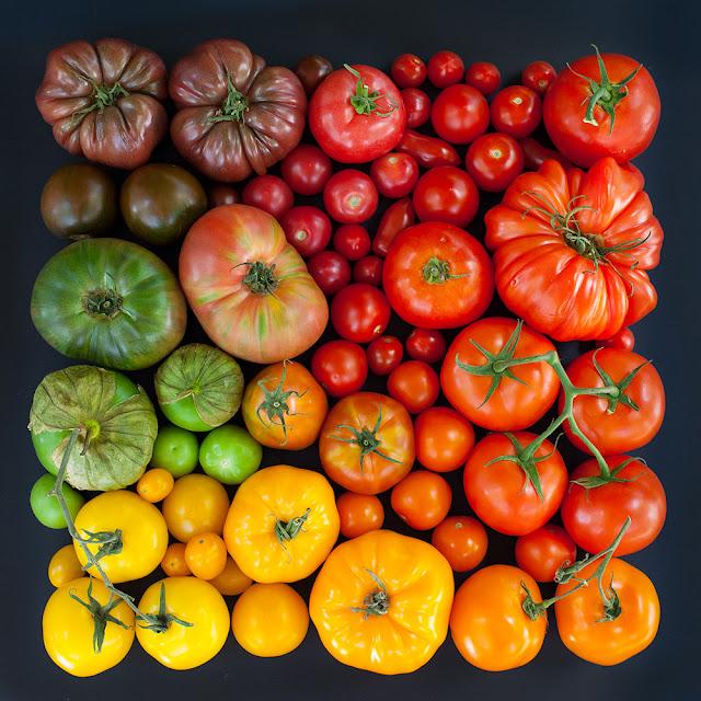 豊かな色彩!自然界の美しいグラデーション作品【Art】 トマトのグラデーション