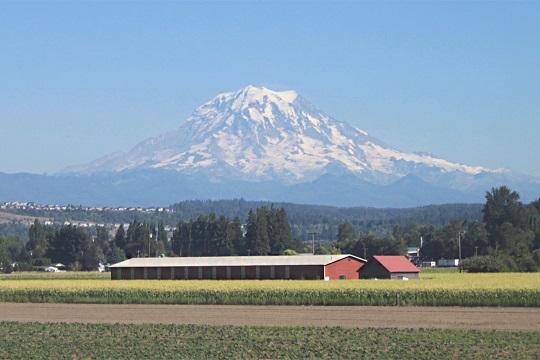 L'ajout de roche volcanique broyée au terres agricoles pourrait stimuler les récoltes et ralentir le réchauffement climatique