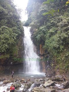 Berkemah Di Taman Wisata Hutan Lindung Gunung Halimun Bogor