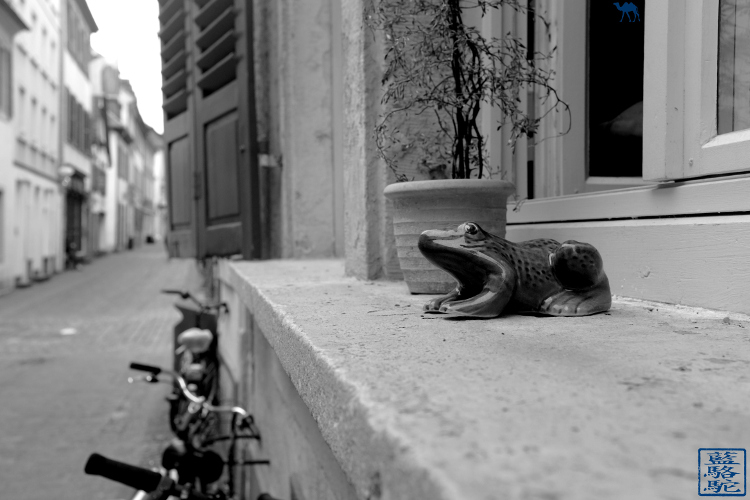Le Chameau Bleu - Blog Voyage Heildeberg Allemagne - Rue dans le Altstadt de Heidelberg