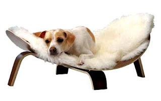 Udobno ležišče za psa.