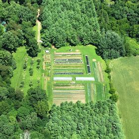Kate Wood, Kate Wood's farm, aerial view, farms, farming, small scale farming