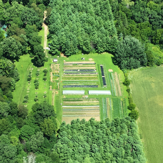 Kate Wood, Kate Wood's farm, aerial view, farms, farming, small scale farming