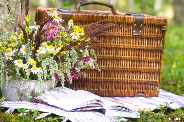 ảnh lẳng hoa và sách