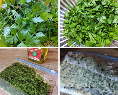 Herbs and oil blended then frozen for preservation