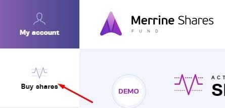 Регистрация в Merrine Shares 3