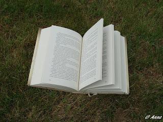 Krásná, akční, fantasy kniha z žánru YA pro vaši dceru nebo kamarádku