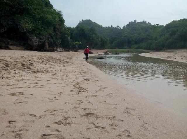 sungai di pantai greweng