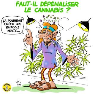 https://fr.wikipedia.org/wiki/Cannabis_en_France