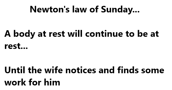 Funny Jokes About Newton With Hilarious Laws,Pictures