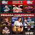 MP3 PEGADA FORROZEIRA 2017