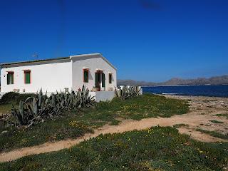 Leie leilighet på Mallorca