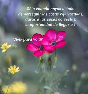 Imagenes de Flores con Frases lindas