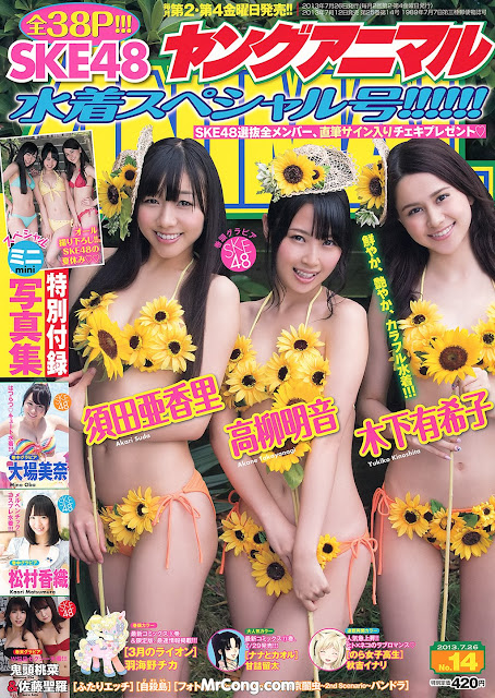 Hot girlsJapan porn magazine cover 2013 collection 143
