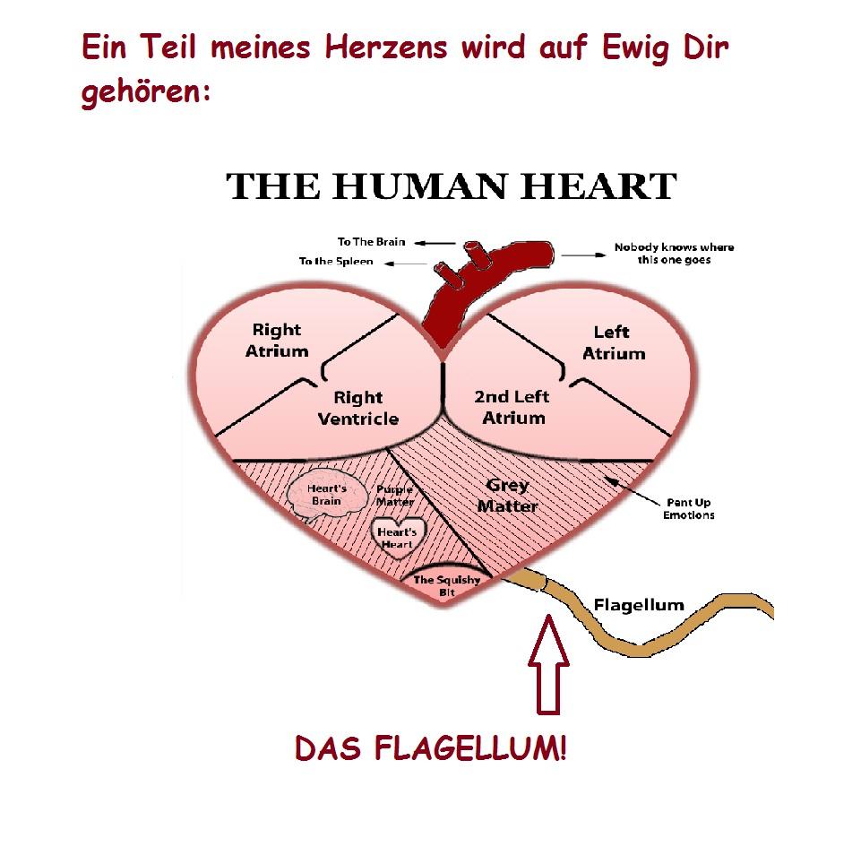Irrsinn Life Anti Valentinstag Grusskarten