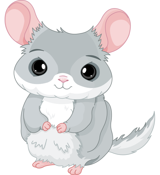 Cuddly Chinchilla Icon