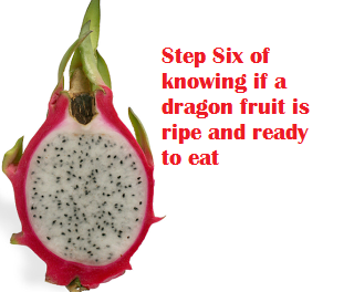 Step Six of knowing if a dragon fruit is ripe and ready to eat