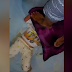 (Video) Kejam! Tekap Bantal & Pijak Kepala Anak Sendiri