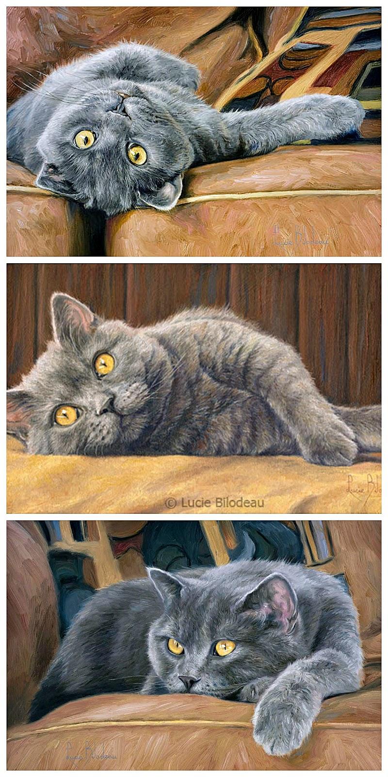 Вышивка схема кот макс