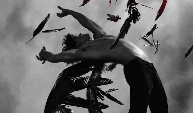 Becca Fitzpatrick | Csitt-csitt es Crescendo | Kritika