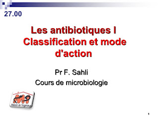 Les antibiotiques Classification et mode d'action .pdf
