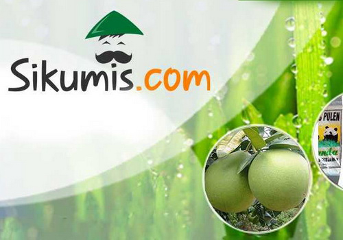 Tinuku SiKumis.com a startup of farm machinery up to fintech