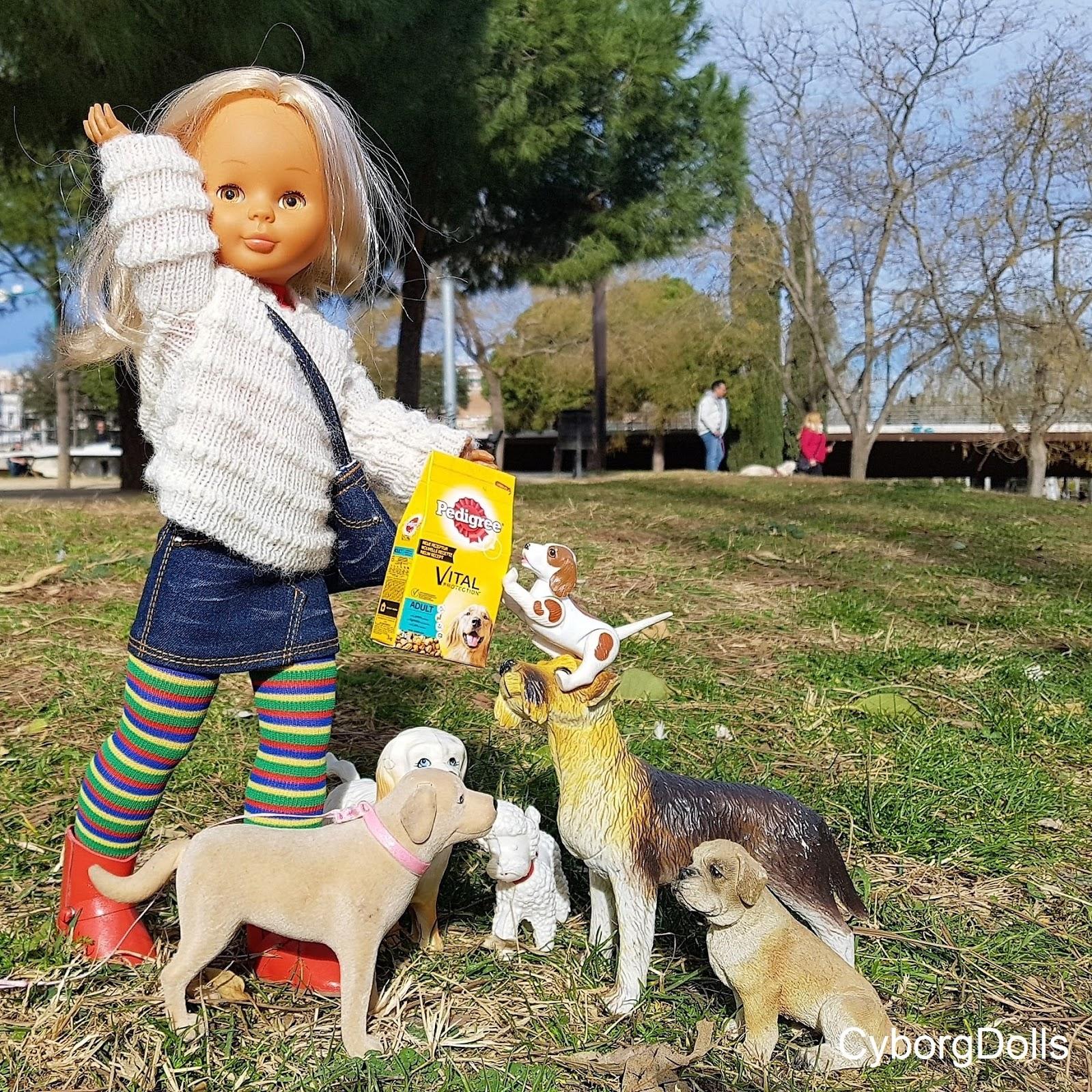Dog Walking Holidays Uk