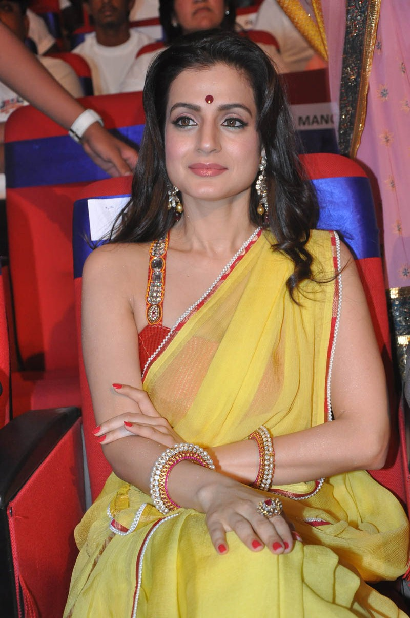 Amisha Patel Hot Stills In Yellow Saree